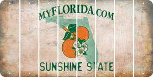 Florida BLANK Cut License Plate Strips (Set of 8) LPS-FL1-037