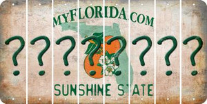 Florida QUESTION MARK Cut License Plate Strips (Set of 8) LPS-FL1-047
