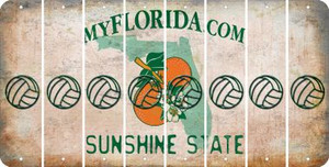 Florida VOLLEYBALL Cut License Plate Strips (Set of 8) LPS-FL1-065