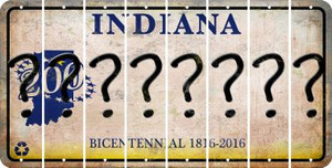 Indiana QUESTION MARK Cut License Plate Strips (Set of 8) LPS-IN1-047