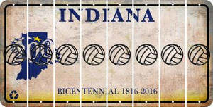 Indiana VOLLEYBALL Cut License Plate Strips (Set of 8) LPS-IN1-065