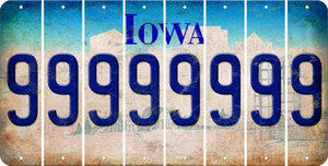 Iowa 9 Cut License Plate Strips (Set of 8) LPS-IA1-036