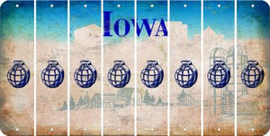 Iowa HAND GRENADE Cut License Plate Strips (Set of 8) LPS-IA1-050