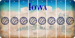 Iowa VOLLEYBALL Cut License Plate Strips (Set of 8) LPS-IA1-065