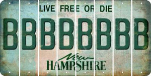 New Hampshire B Cut License Plate Strips (Set of 8) LPS-NH1-002