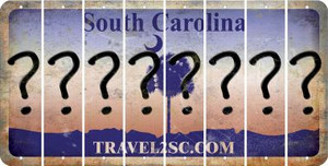 South Carolina QUESTION MARK Cut License Plate Strips (Set of 8) LPS-SC1-047