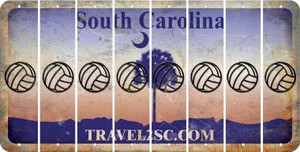 South Carolina VOLLEYBALL Cut License Plate Strips (Set of 8) LPS-SC1-065