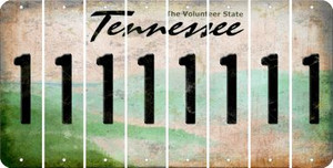 Tennessee 1 Cut License Plate Strips (Set of 8) LPS-TN1-028