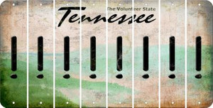 Tennessee EXCLAMATION POINT Cut License Plate Strips (Set of 8) LPS-TN1-041