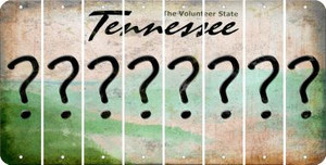 Tennessee QUESTION MARK Cut License Plate Strips (Set of 8) LPS-TN1-047