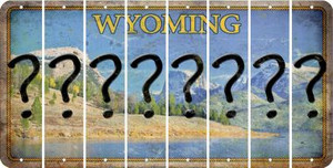 Wyoming QUESTION MARK Cut License Plate Strips (Set of 8) LPS-WY1-047