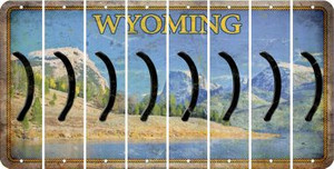 Wyoming RIGHT PARENTHESIS Cut License Plate Strips (Set of 8) LPS-WY1-048