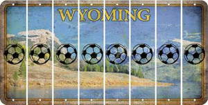Wyoming SOCCERBALL Cut License Plate Strips (Set of 8) LPS-WY1-061