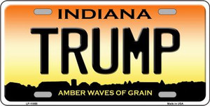 Trump Indiana Wholesale Novelty License Plate LP-11866