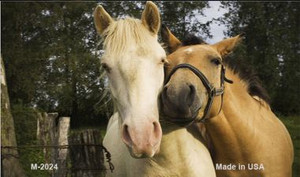 Horses Sweet On Each Other Wholesale Metal Novelty Magnet M-2024
