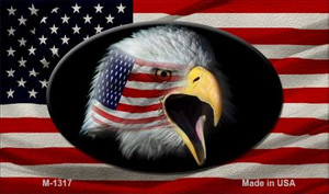 American Flag With Eagle Wholesale Novelty Metal Magnet M-1317