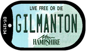 Gilmanton New Hampshire Wholesale Novelty Metal Dog Tag Necklace DT-12134