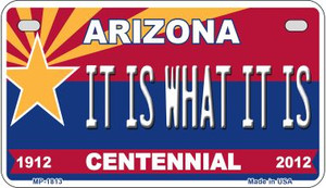It Is What It Is Arizona Centennial Wholesale Novelty Metal Motorcycle Plate MP-1813
