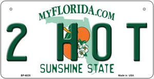 2 Hot Florida Wholesale Novelty Metal Bicycle Plate BP-6025
