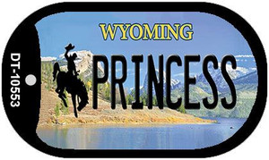 Princess Wyoming Wholesale Novelty Metal Dog Tag Necklace DT-10553