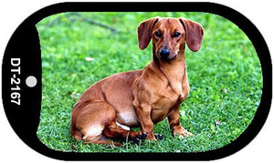 Dachshund Wholesale Novelty Metal Dog Tag Necklace DT-2167