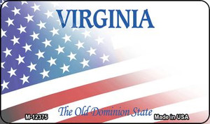 Virginia with American Flag Wholesale Novelty Metal Magnet M-12375