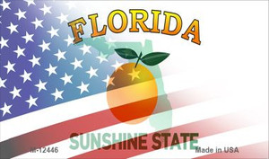Florida with American Flag Wholesale Novelty Metal Magnet M-12446