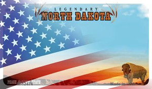 North Dakota with American Flag Wholesale Novelty Metal Magnet M-12474