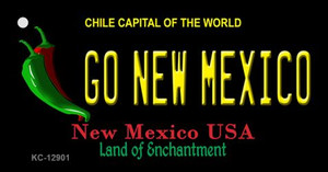 Go New Mexico Wholesale Novelty Metal Key Chain KC-12901
