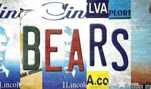 Bears Strip Art Wholesale Novelty Metal Magnet M-13163