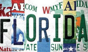 Florida Strip Art Wholesale Novelty Metal Magnet M-13278