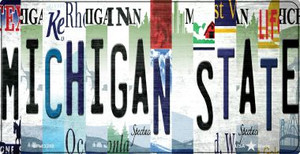 Michigan State Strip Art Wholesale Novelty Metal Bicycle Plate BP-13288