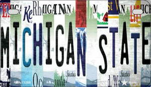 Michigan State Strip Art Wholesale Novelty Metal Motorcycle Plate MP-13288