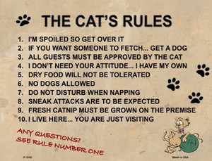The Cats Rules Wholesale Metal Novelty Parking Sign