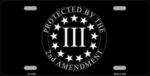 Protected by 2nd Amendment Wholesale Novelty Metal License Plate Tag LP-13581