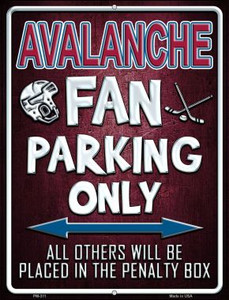 Avalanche Wholesale Novelty Mini Metal Parking Sign PM-311