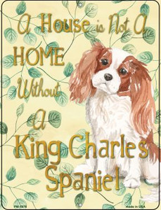 King Charles Wholesale Novelty Mini Metal Parking Sign PM-1976