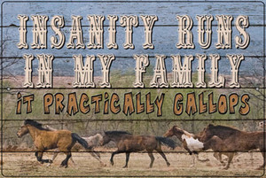 Insanity Runs In My Family Wholesale Novelty Large Metal Parking Sign LGP-3134