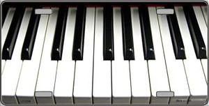 Piano Keyboard Novelty Wholesale Metal License Plate LP-1334
