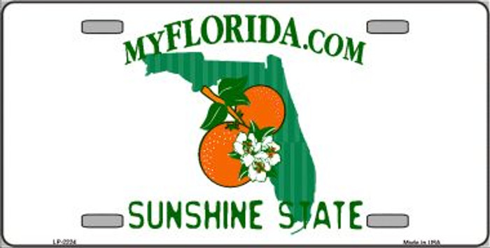 Florida State Background Blank Novelty Wholesale Metal License Plate