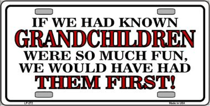 Grandchildren First Wholesale Metal Novelty License Plate LP-272