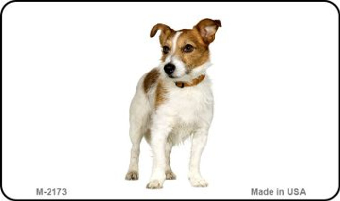 Jack Russell Terrier Wholesale Magnet M-2173