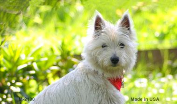 West Highland White Terrier Wholesale Magnet M-2180