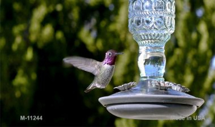 Hummingbird - At Feeder Novelty Wholesale Magnet