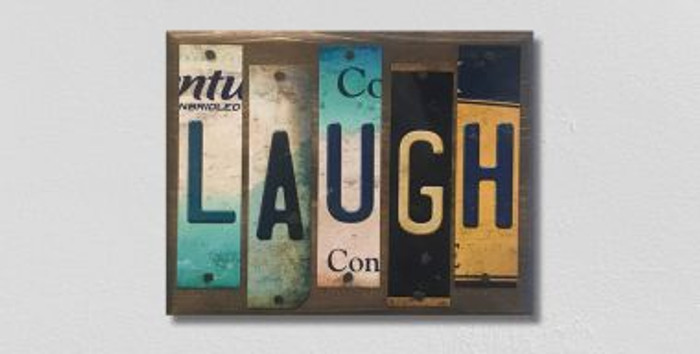 Laugh License Plate Strips Wholesale Novelty Wood Sign WS-097