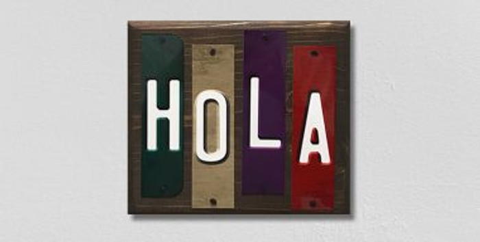 Hola Fun Strips Wholesale Novelty Wood Sign WS-109