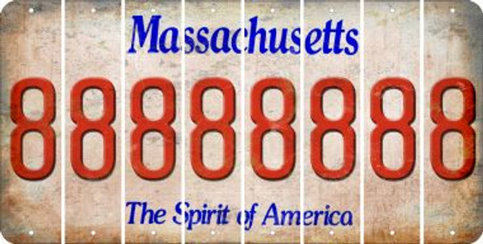 Massachusetts 8 Cut License Plate Strips (Set of 8) LPS-MA1-035