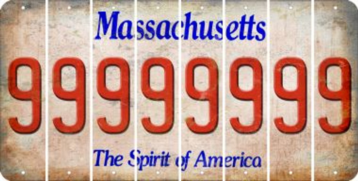 Massachusetts 9 Cut License Plate Strips (Set of 8) LPS-MA1-036