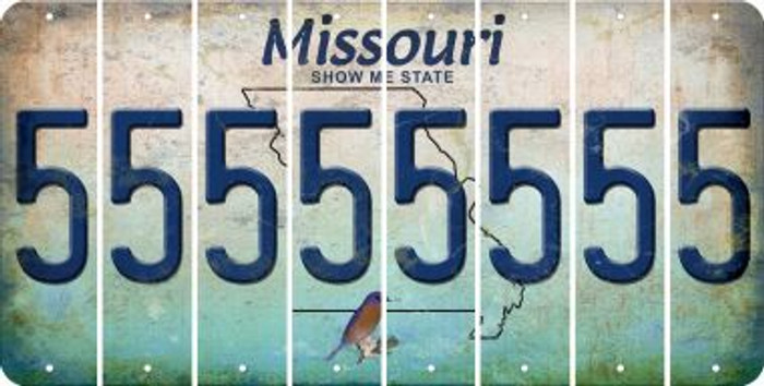Missouri 5 Cut License Plate Strips (Set of 8) LPS-MO1-032