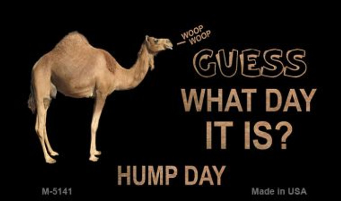 It Is Hump Day Wholesale Metal Novelty Magnet M-5141